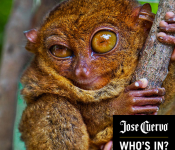 COMPETITION: Jose Cuervo app for #PartyAnimals